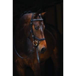 http://www.horseandrider.co.uk/1016-1933-thickbox/horseware-rambo-micklem-diamante-competition-bridle.jpg