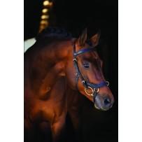 Horseware Rambo Micklem Multibridle