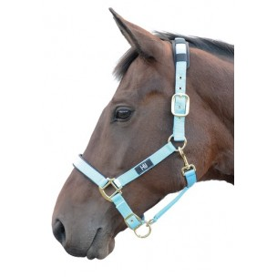 http://www.horseandrider.co.uk/1035-2024-thickbox/hy-deluxe-padded-head-collar.jpg