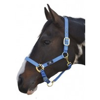 Hy  Head Collar