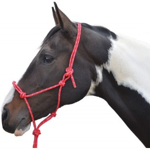 http://www.horseandrider.co.uk/1054-2171-thickbox/hy-rope-halter.jpg