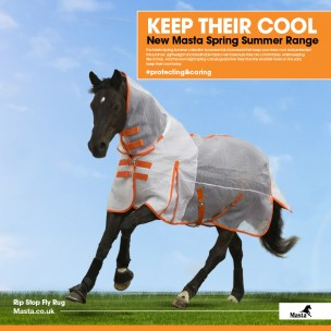 http://www.horseandrider.co.uk/1114-2448-thickbox/masta-rip-stop-fly-rug.jpg