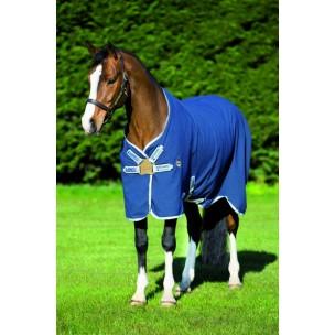 http://www.horseandrider.co.uk/1223-3062-thickbox/horseware-rambo-helix-sheet-with-disc-front-closure.jpg