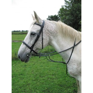 http://www.horseandrider.co.uk/166-280-thickbox/hyclass-leather-running-martingale.jpg