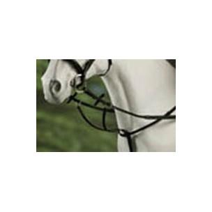 http://www.horseandrider.co.uk/169-283-thickbox/hy-running-martingale.jpg