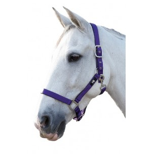 http://www.horseandrider.co.uk/313-1514-thickbox/hy-soft-touch-adjustable-head-collar.jpg