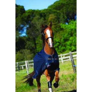 http://www.horseandrider.co.uk/319-1224-thickbox/-horseware-amigo-bravo-12-100g-turnout-lite-rug-aara16.jpg