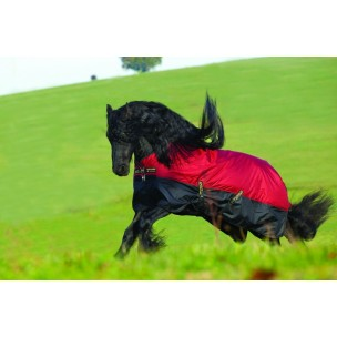 http://www.horseandrider.co.uk/320-1225-thickbox/amigo-mio-turnout-lite-horserug.jpg