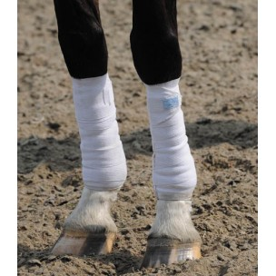 http://www.horseandrider.co.uk/42-156-thickbox/stretch-flex-cool-space-exercise-bandage.jpg