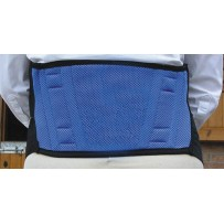 Harpley Magnetic Back Support