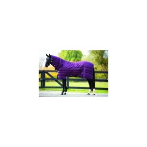 http://www.horseandrider.co.uk/500-1160-thickbox/horseware-amigo-all-in-one-insulator-medium-200g-abrj22.jpg