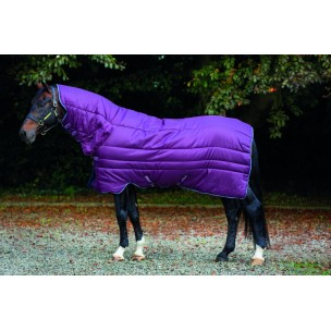http://www.horseandrider.co.uk/501-1241-thickbox/horseware-amigo-all-in-one-insulator-heavy-350g-abrj23.jpg