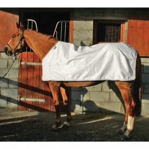 http://www.horseandrider.co.uk/541-681-thickbox/horseware-waterproof-fly-horse-rug-liner-afha7l.jpg