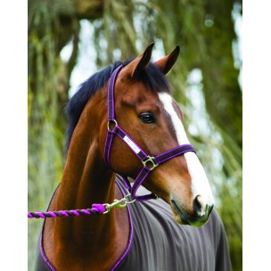 http://www.horseandrider.co.uk/542-1262-thickbox/amigo-headcollar-leadrope-set-.jpg