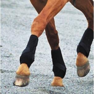 http://www.horseandrider.co.uk/63-178-thickbox/dalmar-hind-eventer-boots.jpg