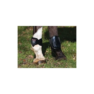 http://www.horseandrider.co.uk/72-1916-thickbox/dalmar-fetlock-boot.jpg
