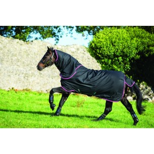 http://www.horseandrider.co.uk/763-1803-thickbox/horseware-amigo-hero-6-medium-plus-turnout-aarp82.jpg