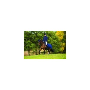 http://www.horseandrider.co.uk/767-1163-thickbox/horseware-rambo-grand-prix-competition-sheet-agac2g.jpg