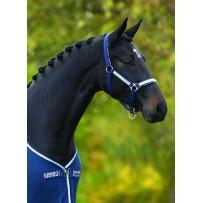 Horseware Rambo Grand Prix Head Collar (DHAG20)