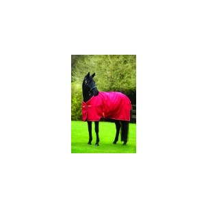 http://www.horseandrider.co.uk/839-1120-thickbox/horseware-amigo-hero-6-lite-turnout-with-fieldsafe-headcollar-aara48.jpg