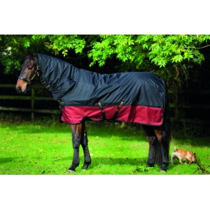 http://www.horseandrider.co.uk/868-1232-thickbox/horseware-amigo-mio-one-piece-medium-t-o-200g-aasj42.jpg