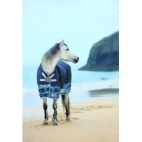 Horseware Amigo Hero 6 Lite 0G Turnout Rug - Disc Front Closure