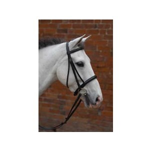 http://www.horseandrider.co.uk/910-1337-thickbox/hy-padded-cavesson-bridle-with-rubber-grip-reins.jpg